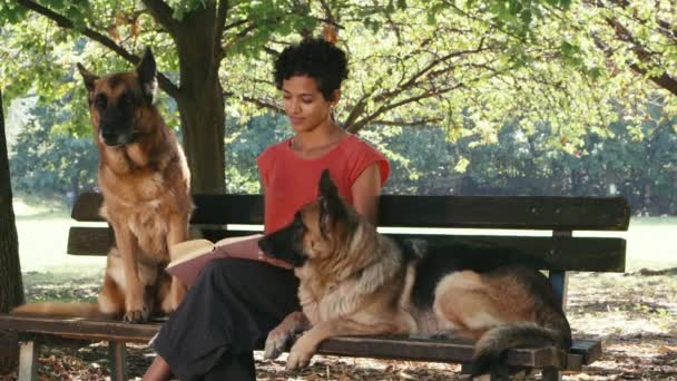Girl at work as dog sitter with alsatian dogs in park, reading book and relaxing
