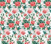 Fotografie Roses.