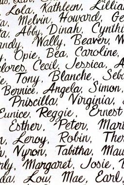 Cursive Handwriting Names