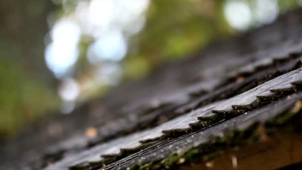 černé dřevěné střešní šindele