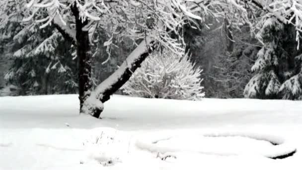 sníh padá tak rychle