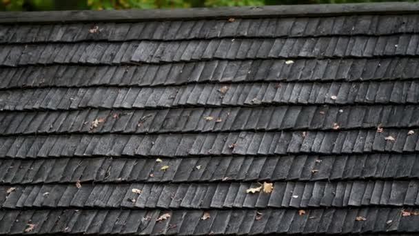 staré černé cedr dřevěná střecha s zvadlé listy