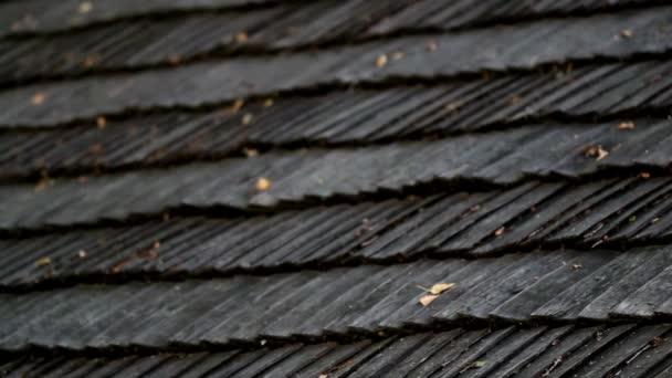 listy na vrcholu cedr dřevěné střešní šindele