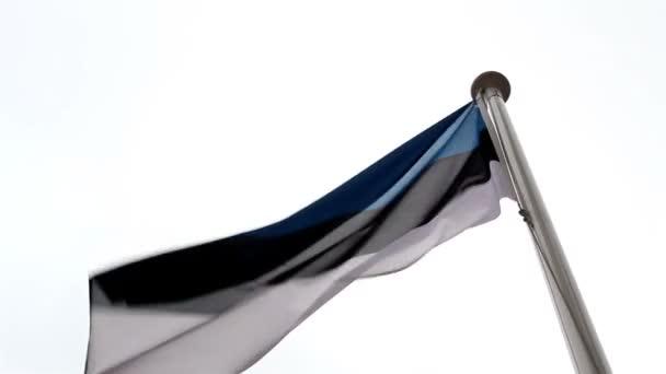 Vlajka Estonska mával ve vzduchu