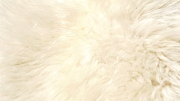 A lambskin or fur that is white in color GH4 UHD