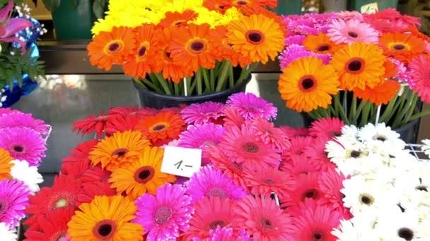 Barevné květiny vystavené v květinářství Gh4 UHD