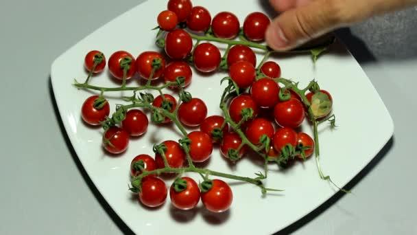 Cherry rajče