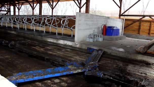 stroje na čištění kravského hnoje