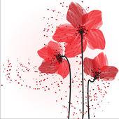 Fotografie červené květy