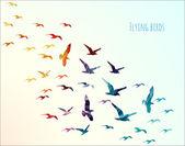 uccelli volanti