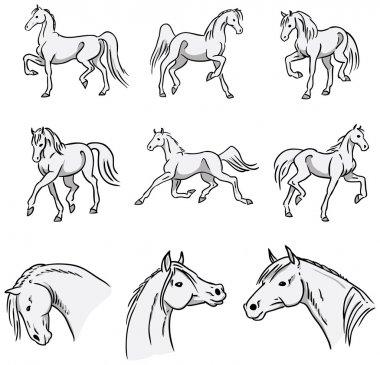 Trotting Arabian Horses