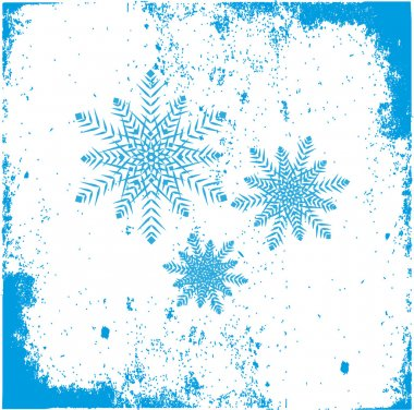 snowflakes symbol of Christmas ornaments