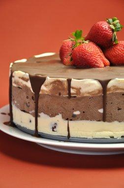 Chocolate Vanilla Layered Ice Cream Cake with Strawberries
