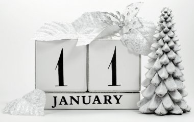 Save the date vintage shabby chic calendar for January 11