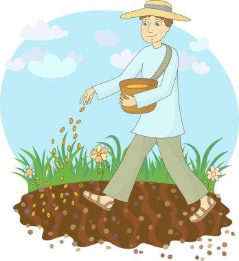 The farmer sows grain