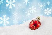 Vánoční cetka ve sněhu