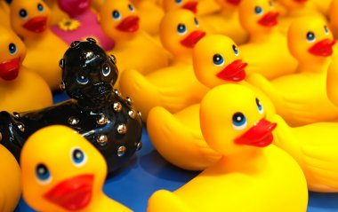 Different black rubber duck amongst yellow ducks