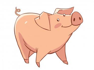 Little funny pig