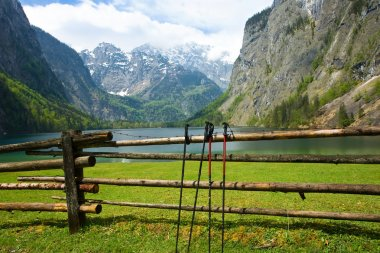 Nordic walking sticks in Alps