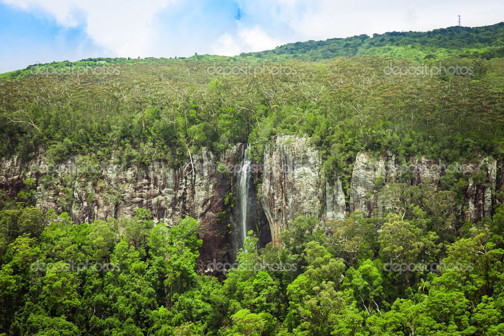 Waterfall in the subtropical rainforest, Springbrook national park, Australia