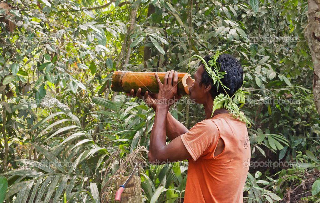 Mann Trinkt Wasser Aus Einem Bambus Im Dschungel Redaktionelles