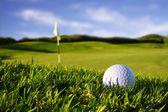 golfový míček v kurzu