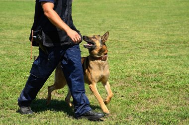 K9 police officer with his dog
