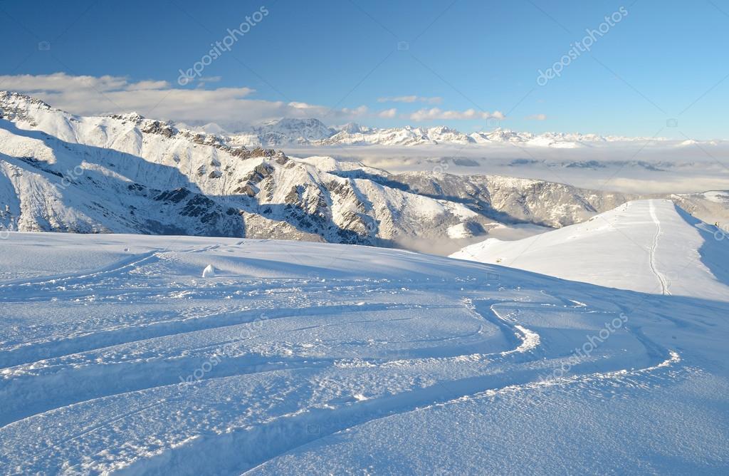 Enjoying powder snow