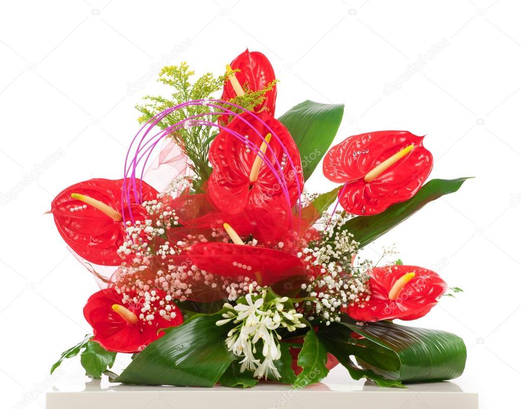 Cesto di fiori di anthurium rosso foto stock for Anthurium rosso