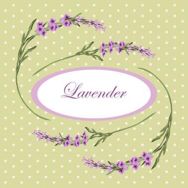 Lavender frame 5