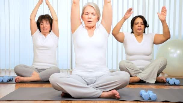 Retired Ladies Fitness Yoga Exercises