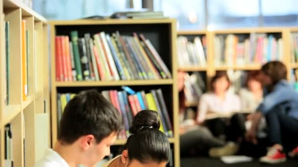 Třída různorodých studentů v knihovně