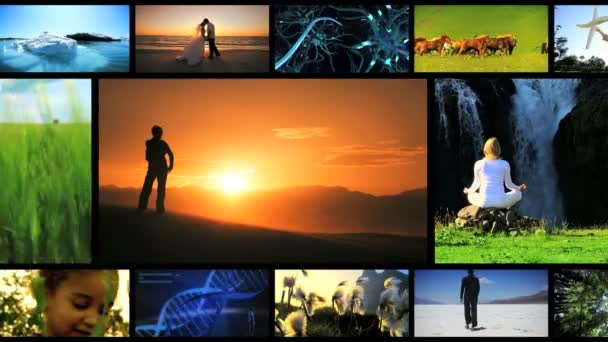 Montage of lifestyle achievements and ecosystems