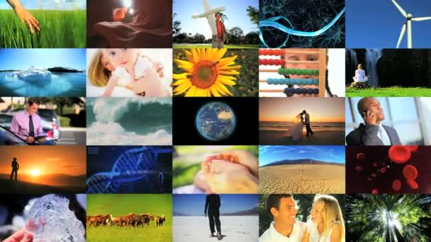 Montage of human and environmental ecosystems