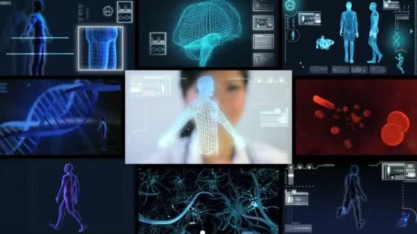 montáž virtuální vědecký výzkum