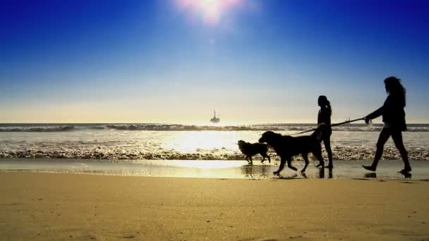 Oil platform at sea with walking dogs in silhouette
