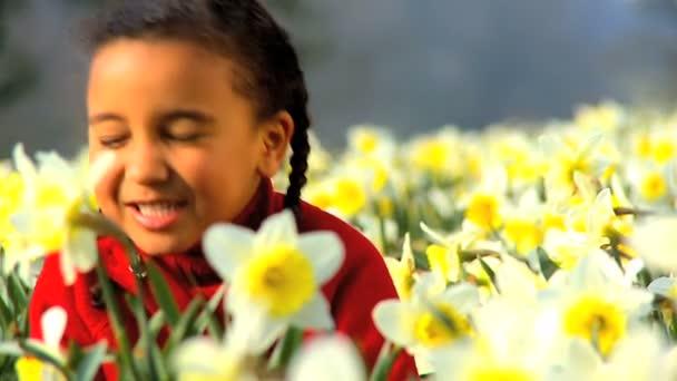 carino bambino afro-americano, giocando in un campo di narcisi