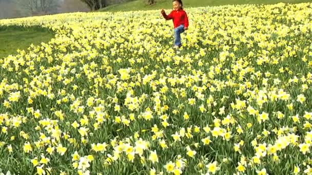 Cute african american child playing in a field of daffodils