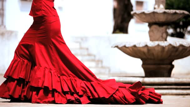 Dramatic Spanish Flamenco Dancing