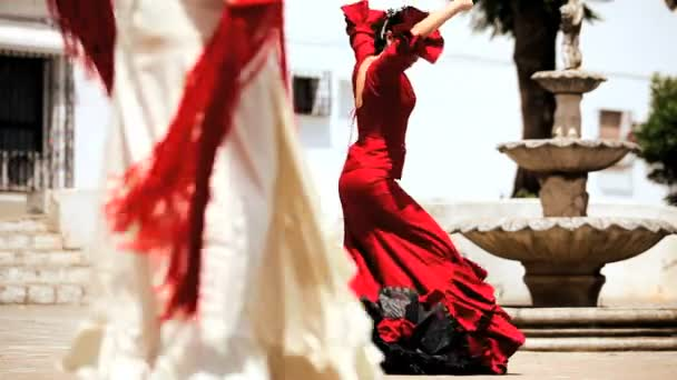 Traditional Spanish Flamenco
