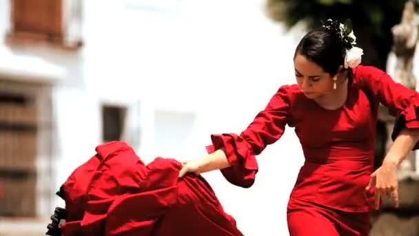 Flamenco Vídeos De Stock Libres De Derechos Hd 4k Videoclips Depositphotos