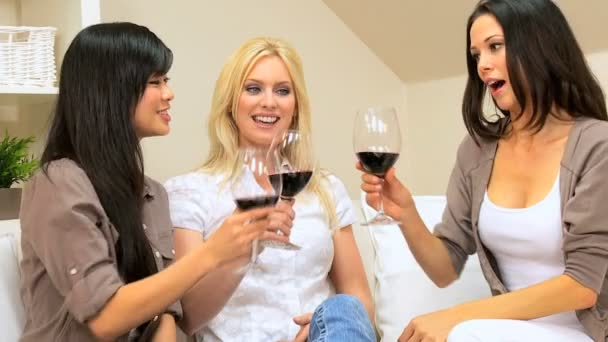 Pretty Girlfriends at Home Drinking Wine