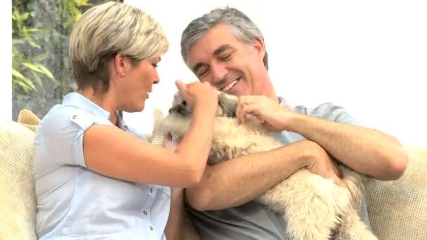 Érett pár Petting a kutya