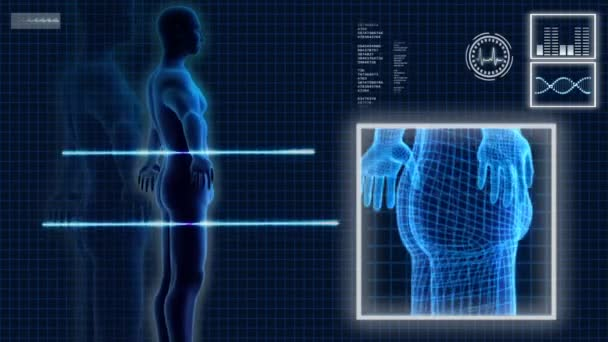 3D Motion-Grafik der menschlichen männlichen Anatomie