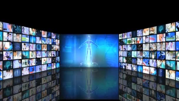 virtual monitor research human body