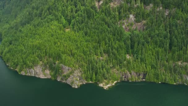 Aerial view forested mountainside mature trees, mountain lake Rockies