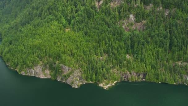 Letecký pohled na zalesněné stráně vzrostlé stromy, horské jezero rockies