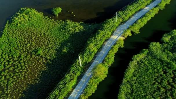 vista superior da natureza na Flórida