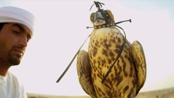 Uomo arabo con il falco addestrato