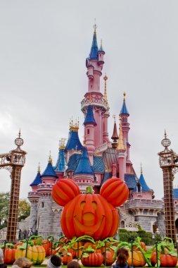 Fun Tİme in Disneyland,Paris France